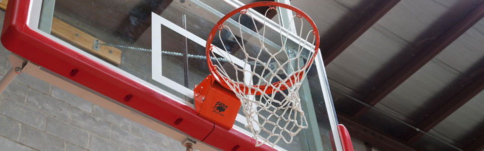 Basketball-feature