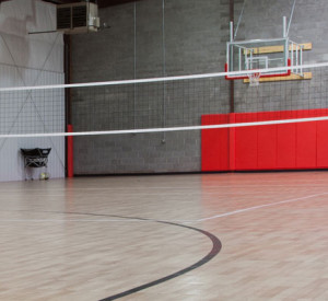 Volleyball-feature